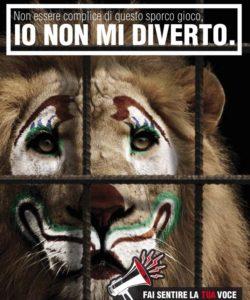 animali-al-circo
